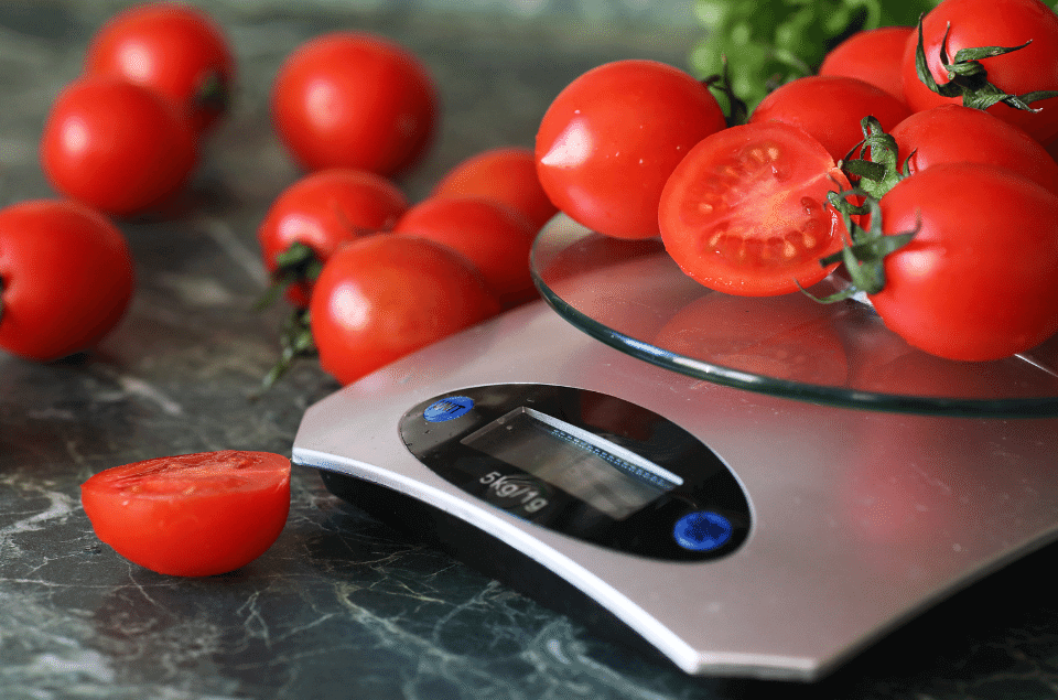 Best Food Scales for Diabetics